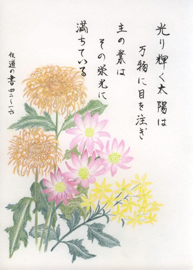 小野春子さんが描いた花の絵