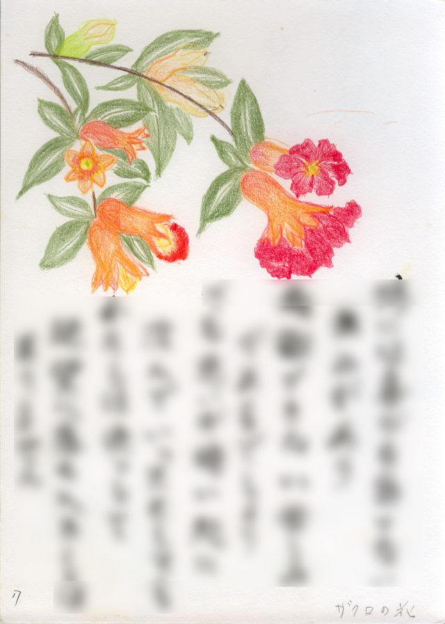 小野春子そんが盲目で描いたザクロの花