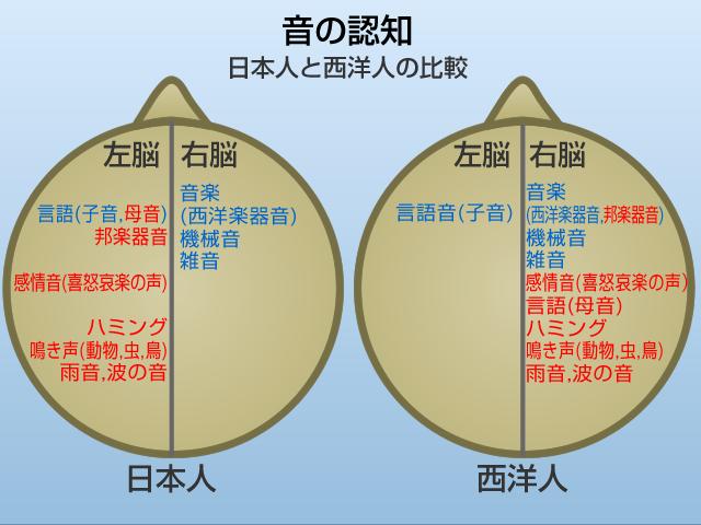 日本人の脳